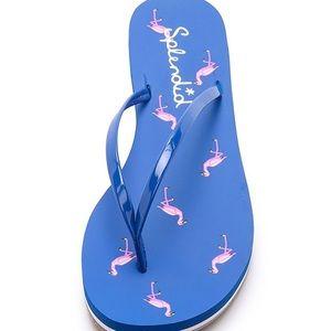 Splendid Flamingo jelly flip flops
